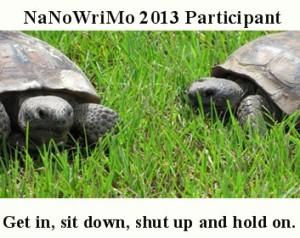 nano turtles